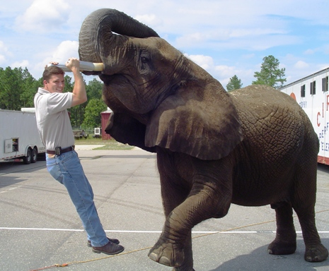 Brian with Elephant