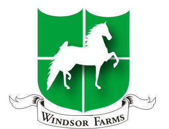 Windsor Farm Saddlebreds - Home Page